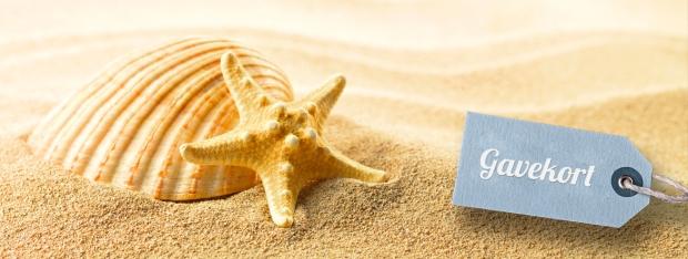 fbs-massage-gavekort